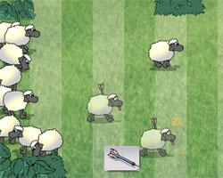 Завали овцу!