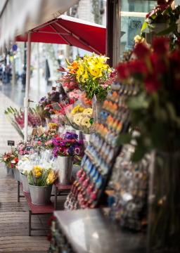 Rambla Flowers